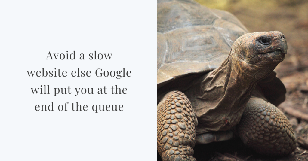 wordpress slow website