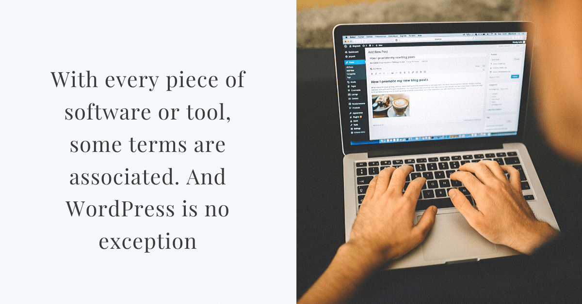 wordpress terms