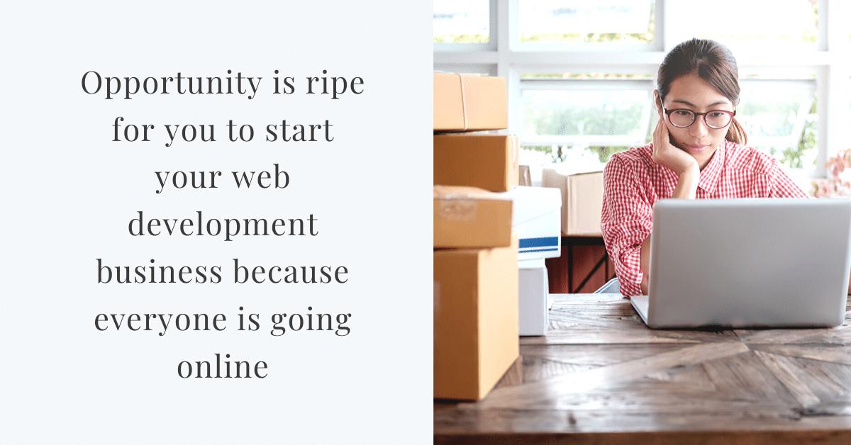 web development business