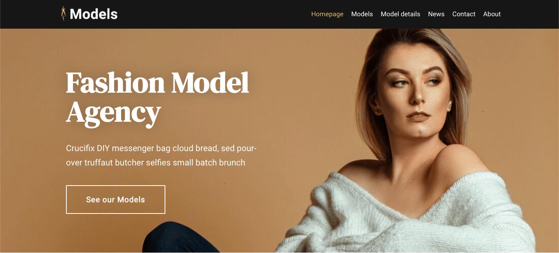 fashion model wordpress theme